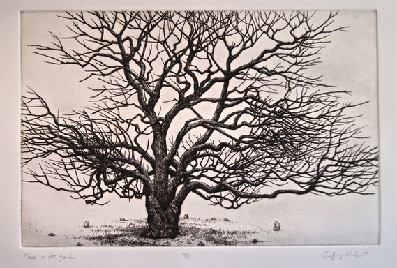 Tree in the Garden - intaglio etching and engraving